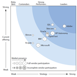 Forrester Wave 2013 - Web Content Management Systeme