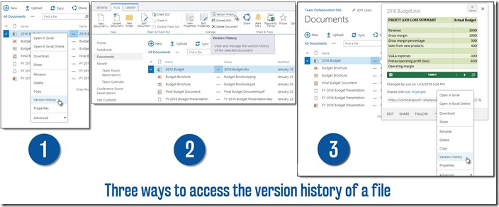 AccessVersionHistory