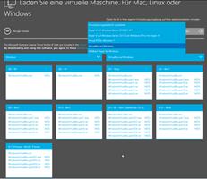 Cross-browser - Vereinfachtes Testen in Internet Explorer